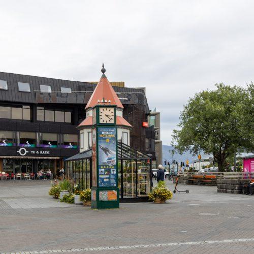 Reykjavík ● Straßenszenen ● am Lækjartorg ● ©2020